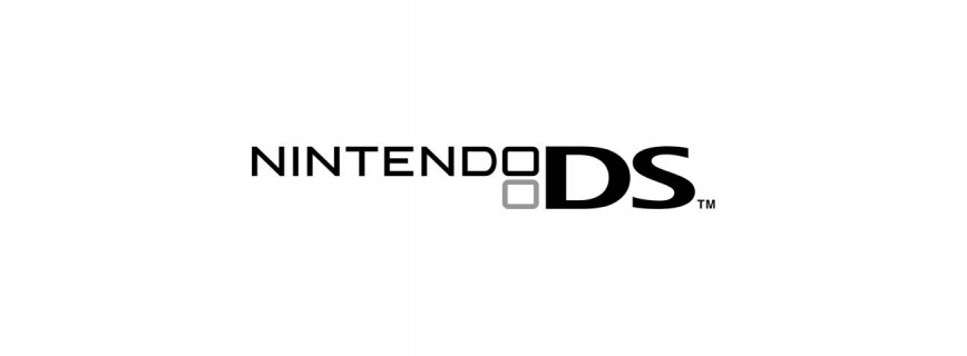 Flash NINTENDO DS
